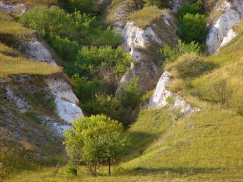 Крейдові яри. Харківська область
